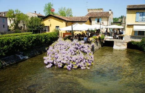 Biciclette - Hotel alla Campagna - The Chocolate & Flowers ...